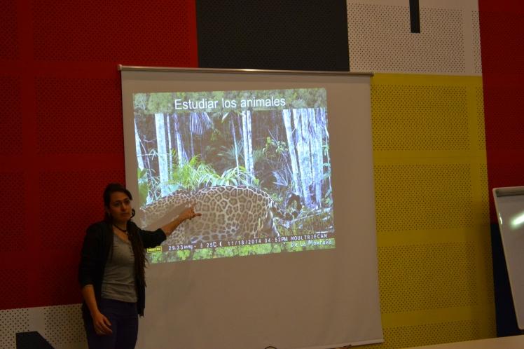 Estudian los animales con cámaras trampa que les guardan sorpresas como esta. Un jaguar se paseó delante de la cámara sólo un rato después de ponerla